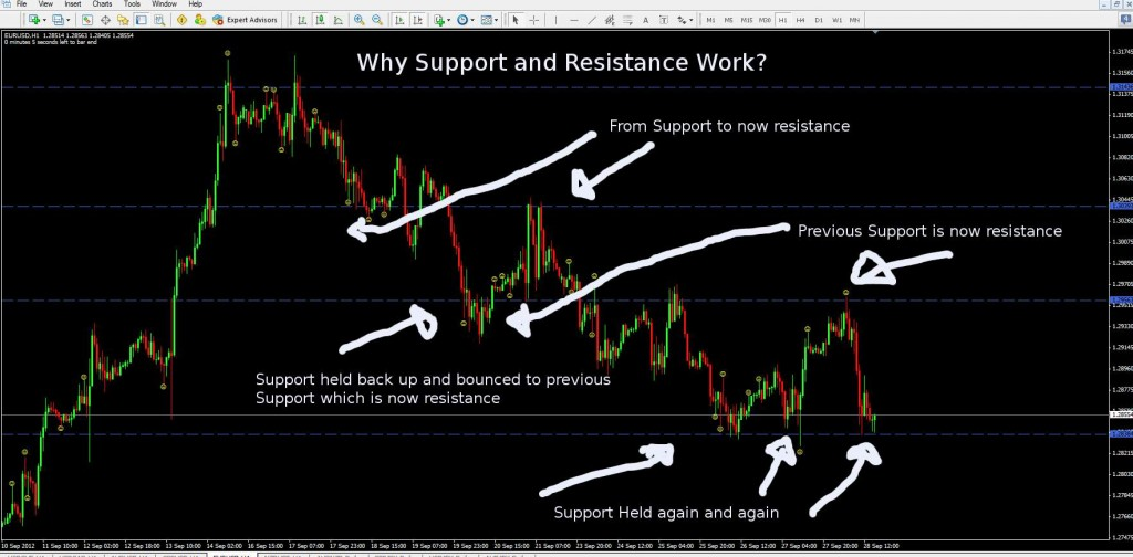 why support and resistance work 1