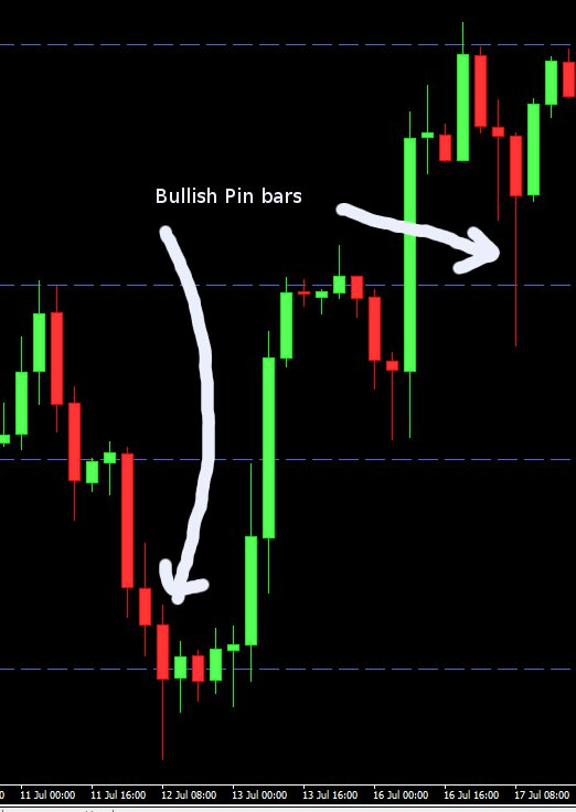 Trade candlestick to how success use forex to